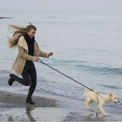 Walking along the beach with your dog after stem cell therapy