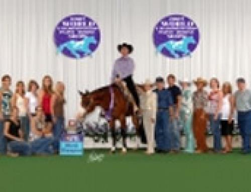 Horse Testimonials – Zip Mes Asset
